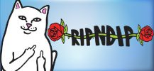 RIPNDIP Pop-Up – Il nuovo apre a New York